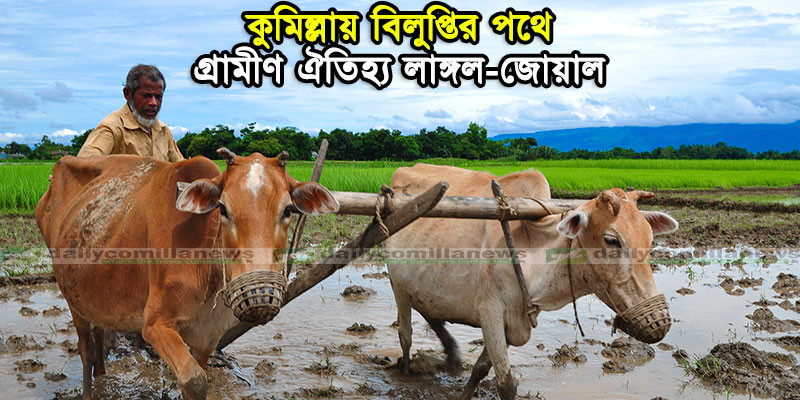 Traditional_cultivation_in_Bangladesh